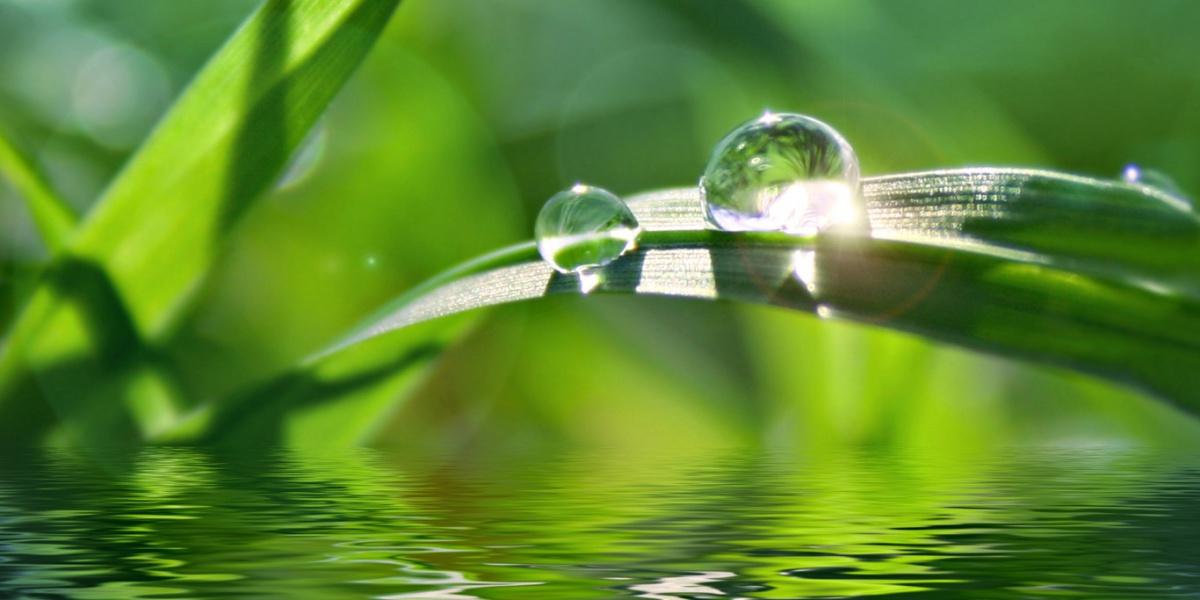 acqua-alcalina-ionizzata